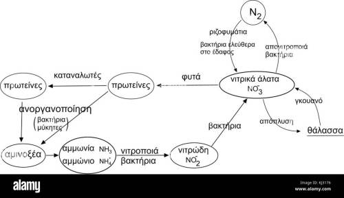 small resolution of nitrogen cycle el stock image