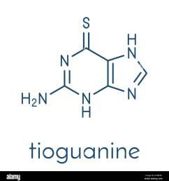 tioguanine leukemia and ulcerative colitis drug molecule skeletal formula stock vector [ 1274 x 1390 Pixel ]