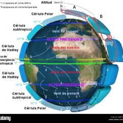 Global Wind Patterns Diagram Vz Binnacle Gauge Wiring Earth Circulation Cat Stock Photo 169434837 Alamy