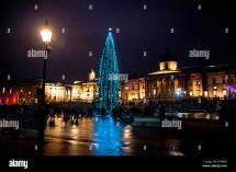 Oslo Christmas Tree Stock &