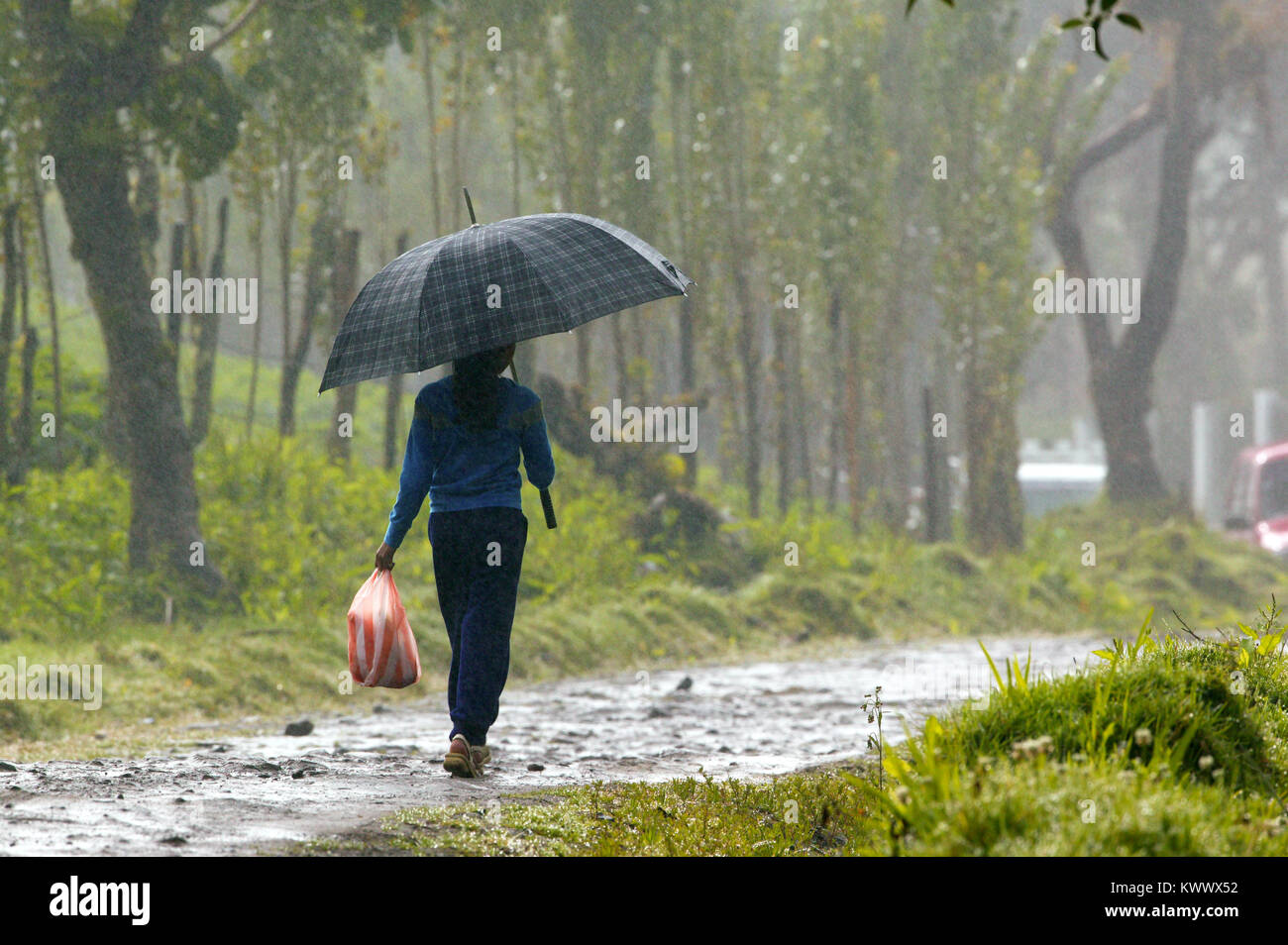 girl with umbrella on