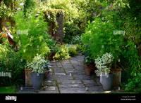 Patio Gardening Stock Photos & Patio Gardening Stock ...