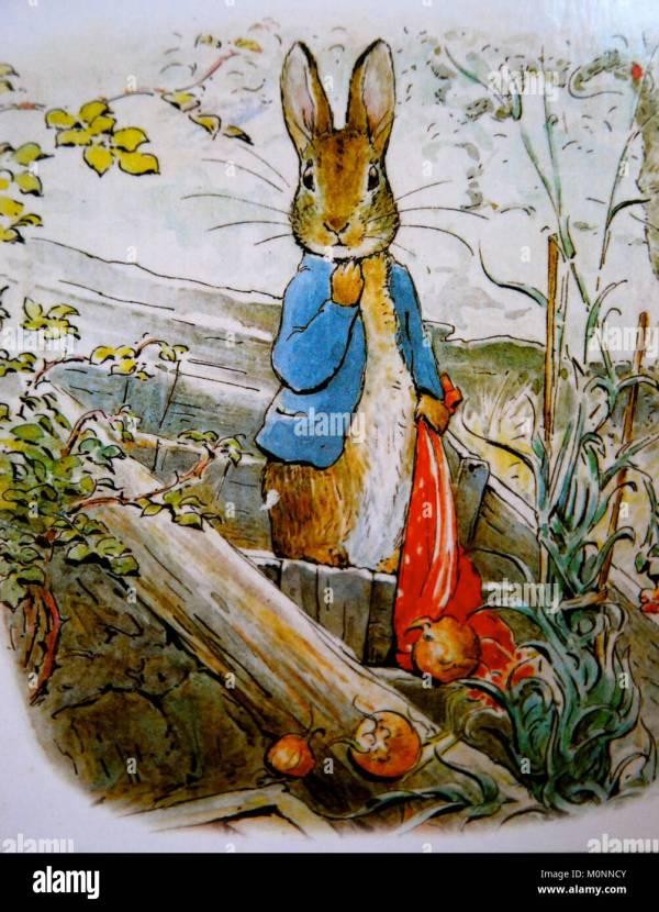 Peter Rabbit Illustration Stock &