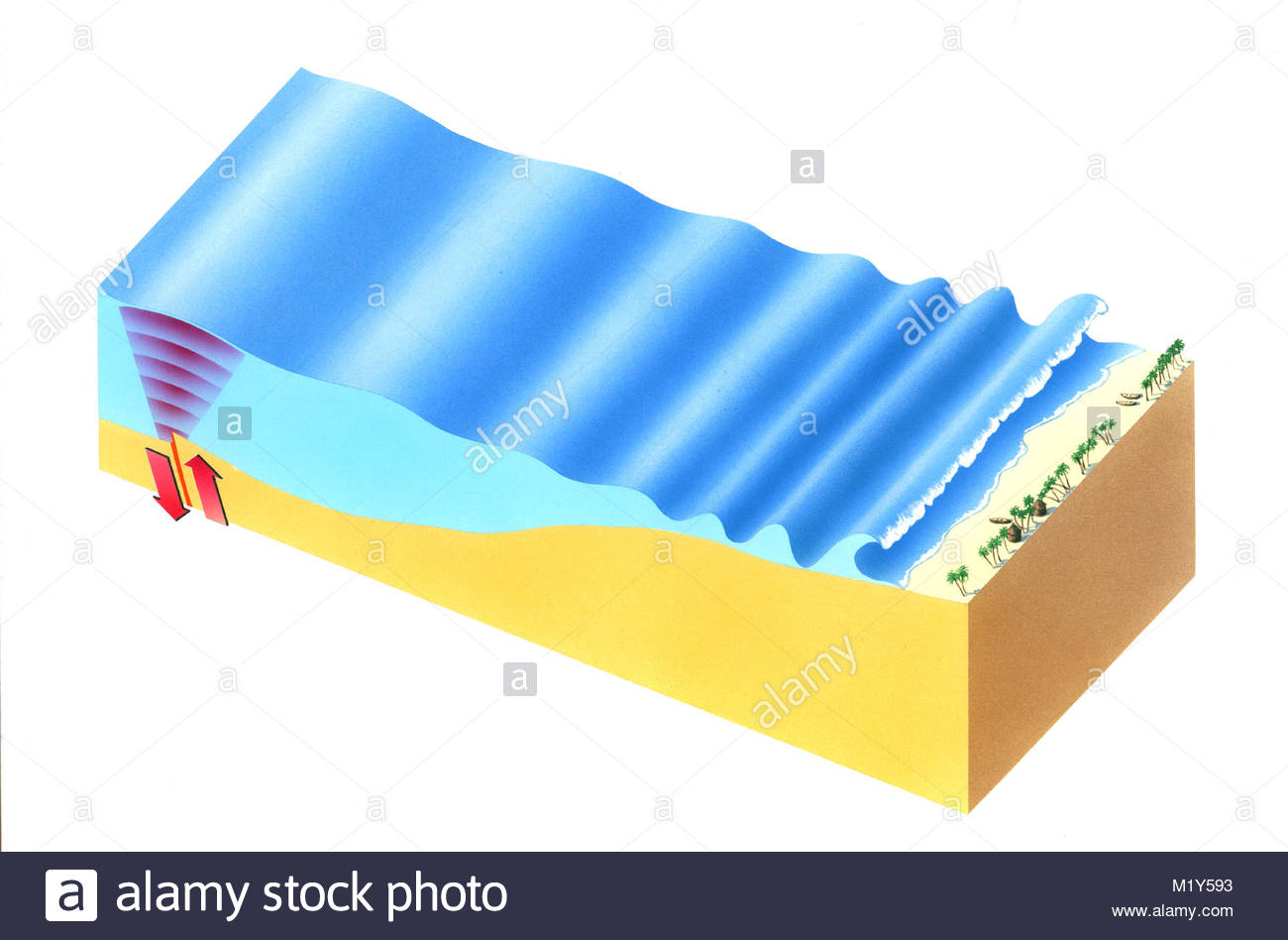 tsunami diagram with labels club car ds gas wiring giant wave block stock photo 173315215 alamy