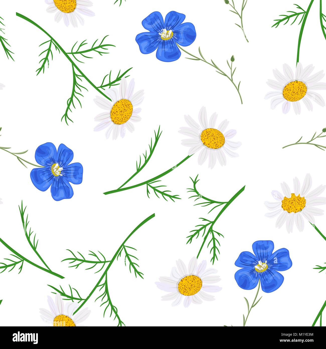 daisy and forget me