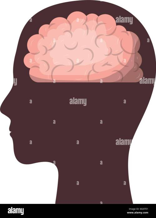 small resolution of human face brown silhouette with brain inside in colorful silhouette