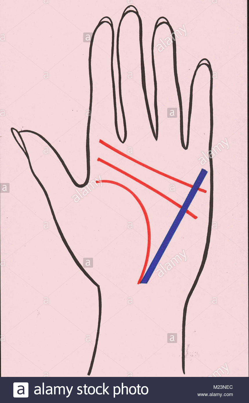 hight resolution of in addition to palm reading line 2