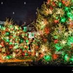 Outdoor Christmas Decorations High Resolution Stock Photography And Images Alamy