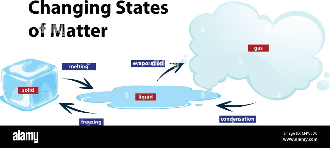 states of matter change diagram line plot worksheet showing the changing illustration stock