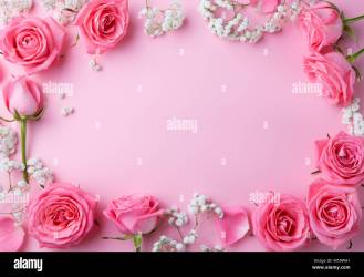 Rose flowers frame on pink background Top view Copy space Stock Photo Alamy