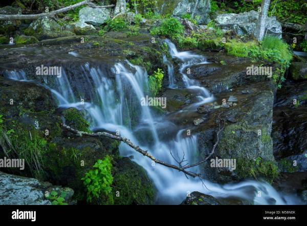 Virginia Shenandoah National Park Waterfall Moss