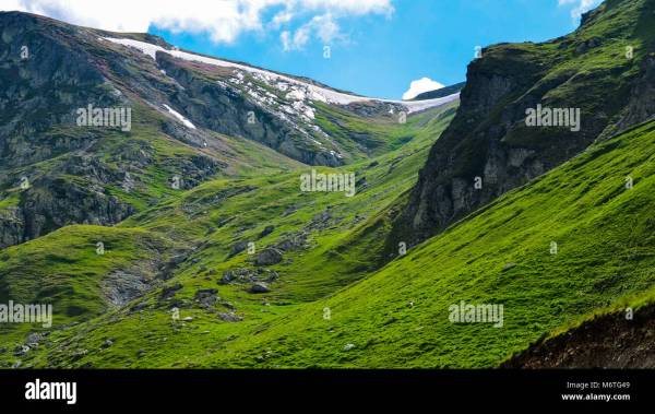 Alps Mountain Valley Summer Scenery Stock &