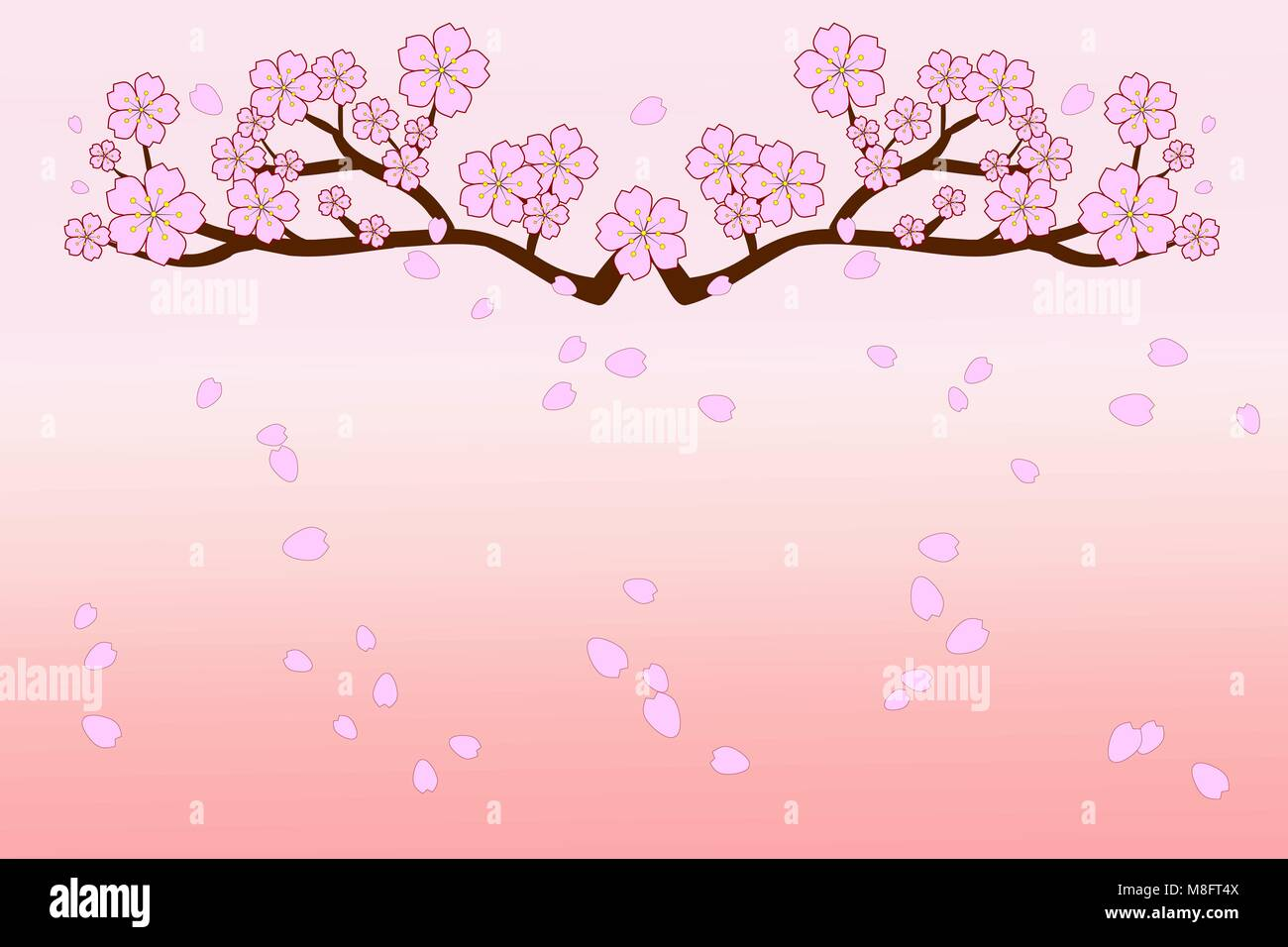 Sakura Falling Live Wallpaper Downloads Full Bloom Cherry Blossoms And Blowing Flying Petals On