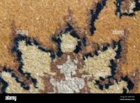 Carpet Layer Stock Photos & Carpet Layer Stock Images