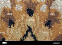 Carpet Layer Stock Photos & Carpet Layer Stock Images - Alamy