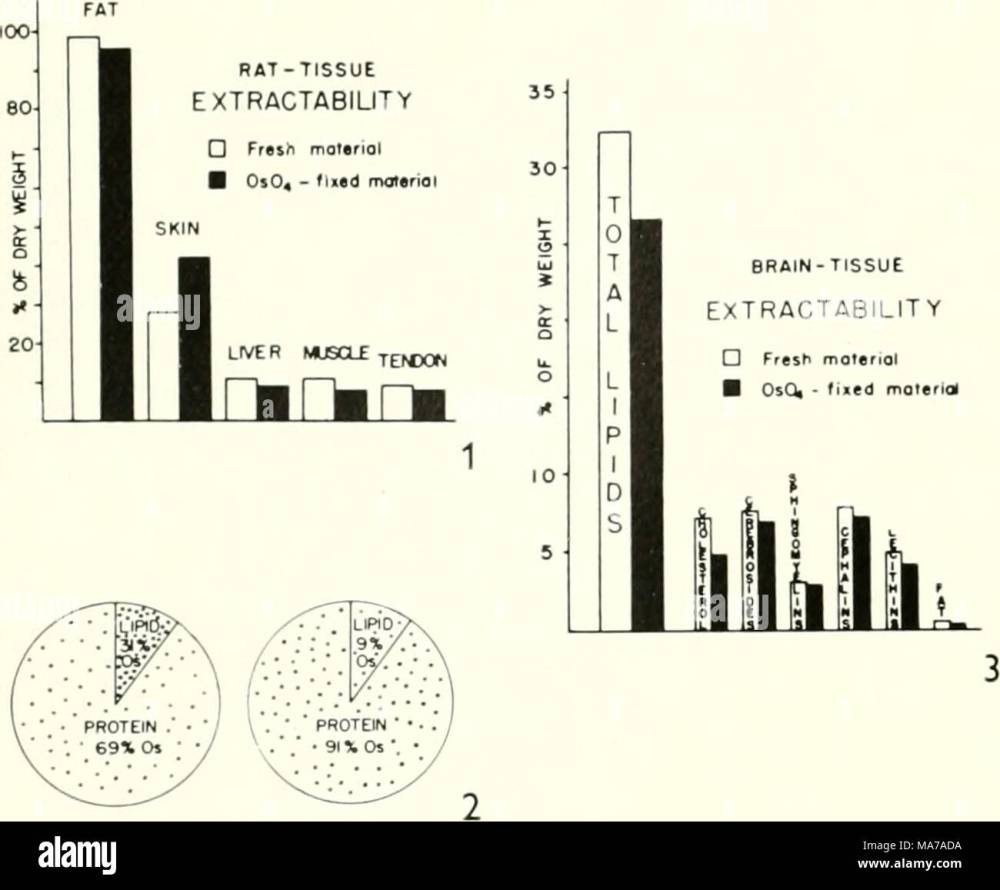 medium resolution of electron microscopy proceedings of the stockholm conference september 1956 obviously makes