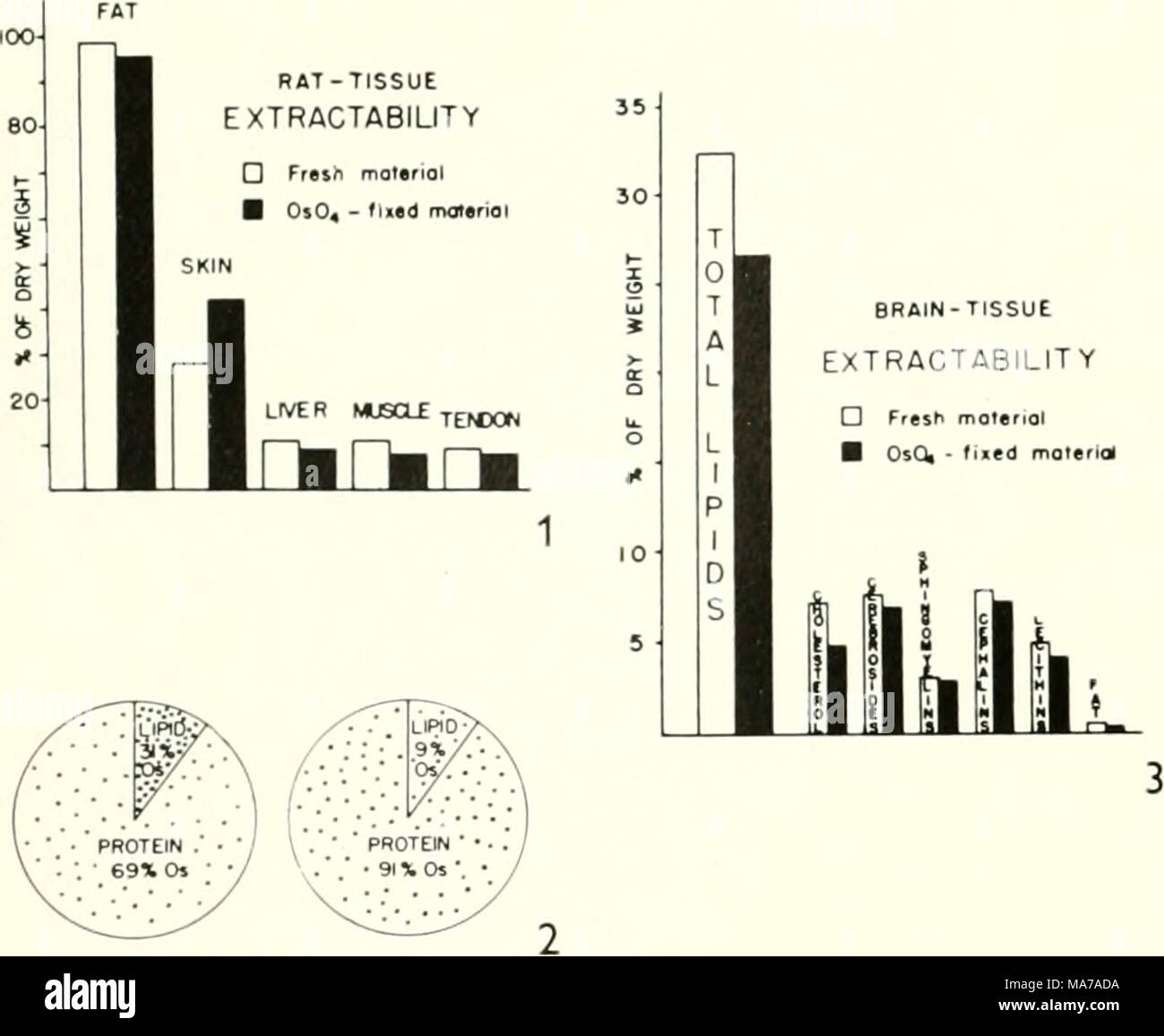 hight resolution of electron microscopy proceedings of the stockholm conference september 1956 obviously makes