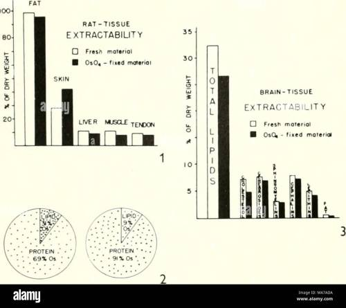 small resolution of electron microscopy proceedings of the stockholm conference september 1956 obviously makes