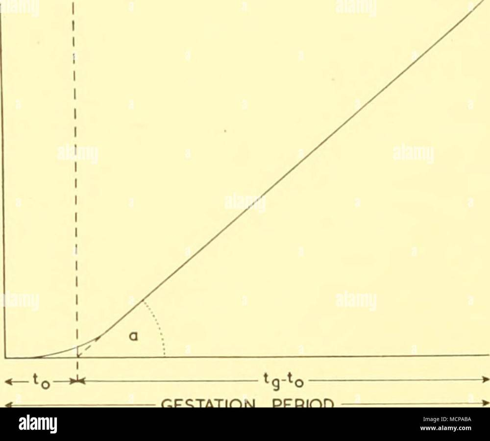 medium resolution of i diagram illustrating relation between foetal weight or length gestation period and a after huggett and widdas 1951 in this respect the work of