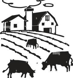 cows grazing on farm retro clipart illustration [ 1090 x 1390 Pixel ]