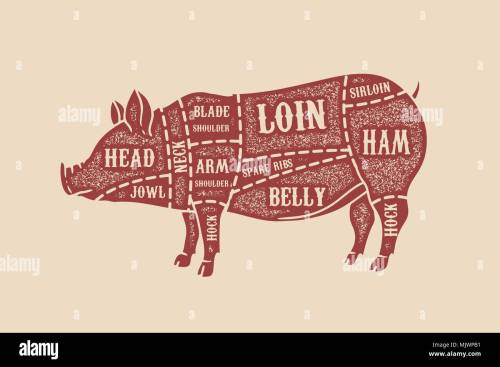 small resolution of pig butcher diagram pork cuts design element for poster card emblem badge vector image
