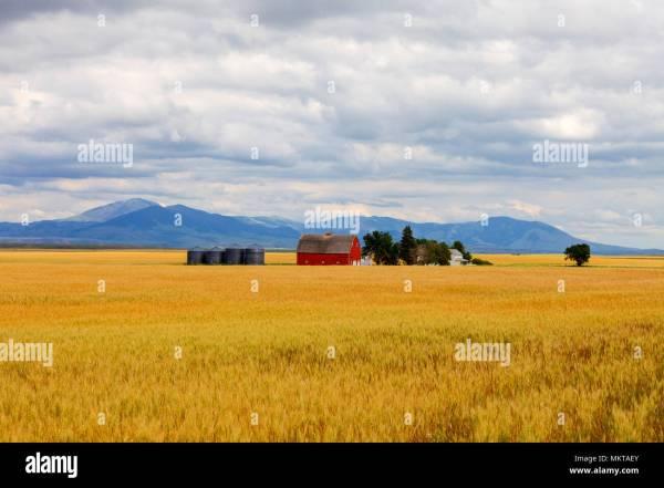 Winter Great Plains Montana