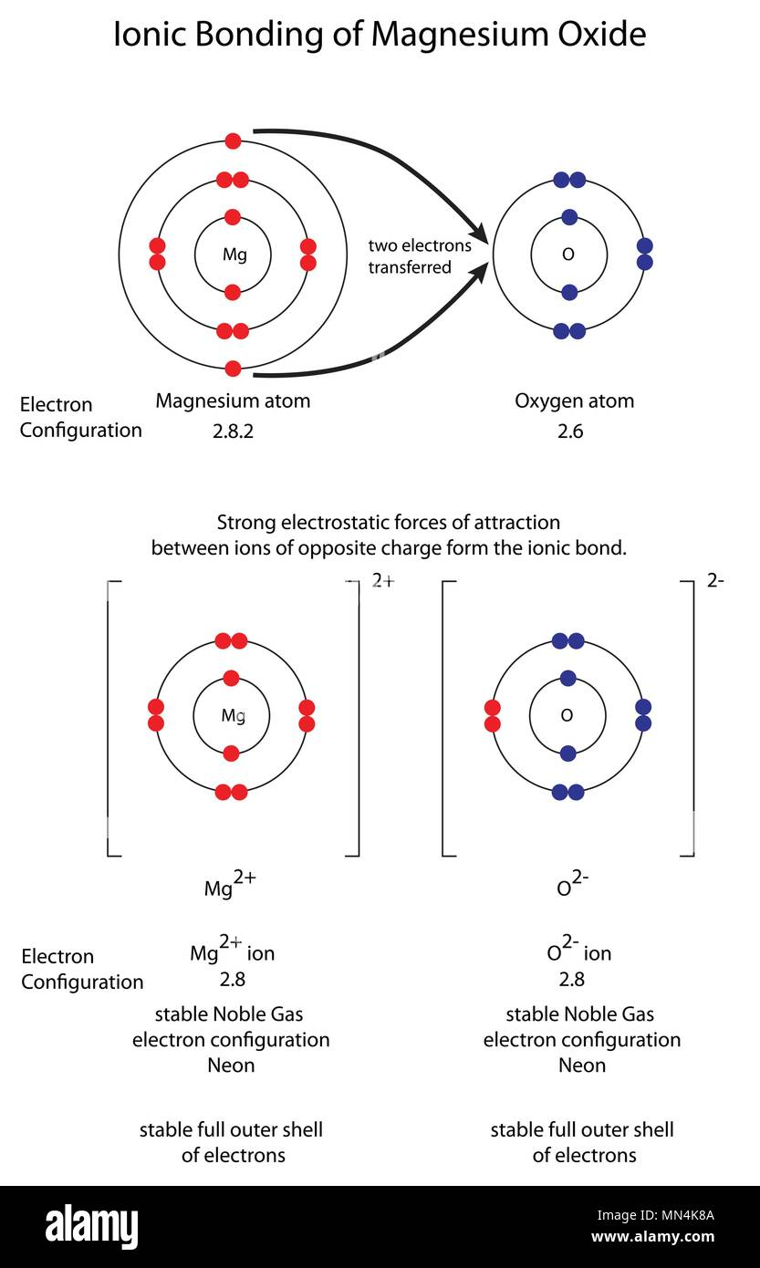 hight resolution of diagram to show ionic bonding in magnesium oxide stock vector art lewis dot diagram magnesium diagram