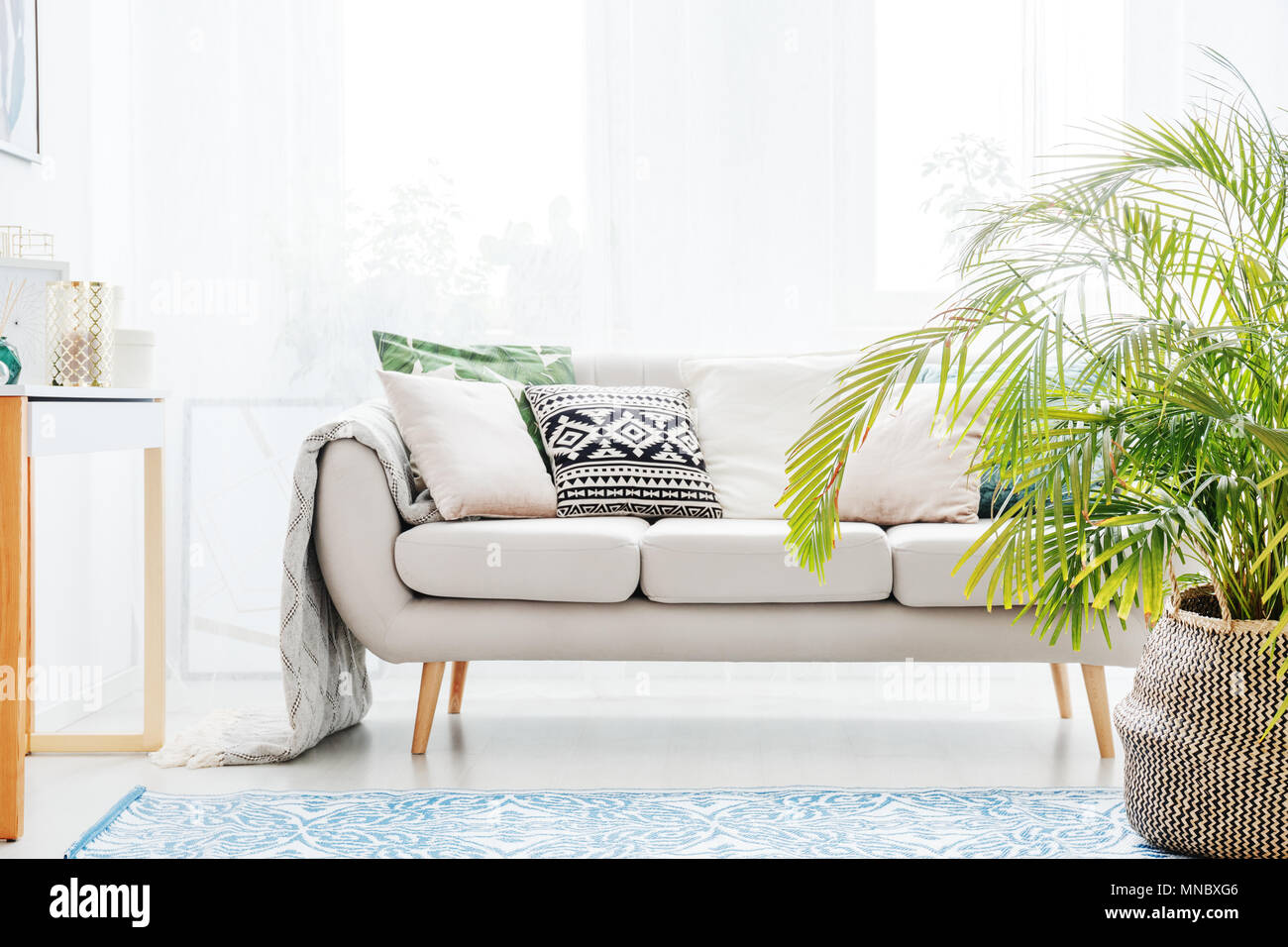 bright sofa legs for sofas and chairs plant next to beige with cushions in living room blue carpet