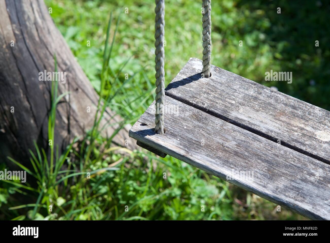 swing chair thailand wheelchair loan wooden tree stock photos and