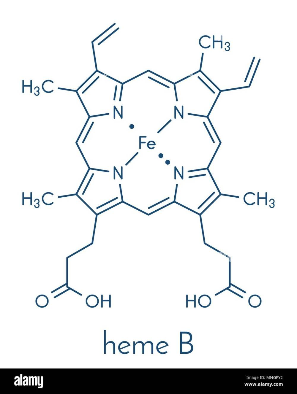 medium resolution of heme is an essential component of hemoglobin myoglobin cytochrome catalase and other metalloproteins skeletal formula