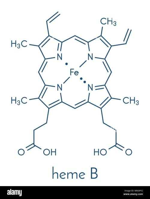 small resolution of heme is an essential component of hemoglobin myoglobin cytochrome catalase and other metalloproteins skeletal formula