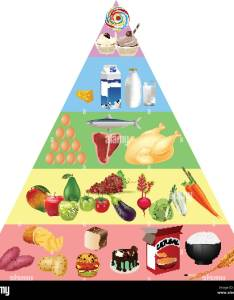 Food pyramid chart also stock vector art  illustration image rh alamy