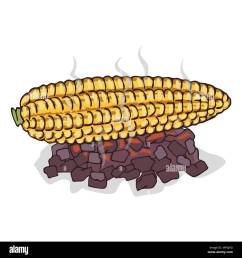 isolate grilled corn ears fruit on white background close up clipart with shadow in flat [ 1300 x 1390 Pixel ]