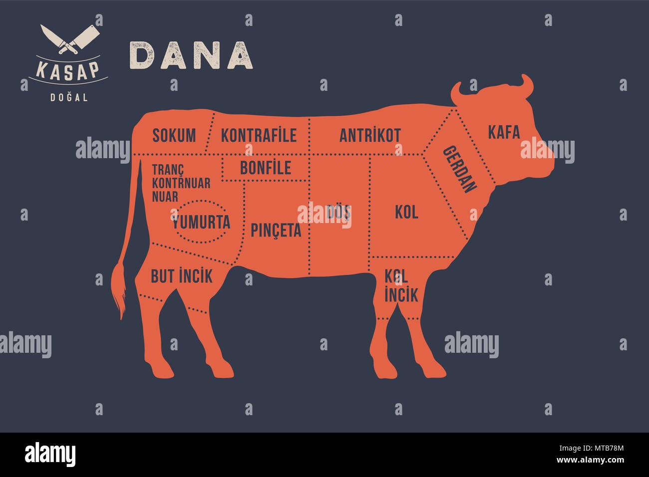hight resolution of meat cuts poster butcher diagram dana stock image