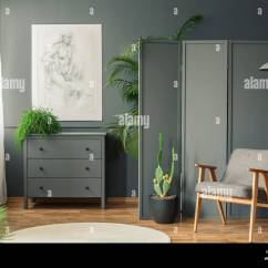 Decorative Screens For Living Rooms Room Paint Colours 2018 A Screen Standing Behind Chair Cactus And Hanging Lamp Next To Shelf In Grey Interior With Round Rug On The Wooden Floo