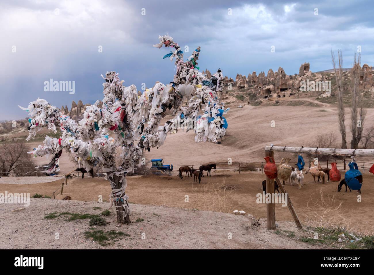 Wish Tree In Goreme At Cappadocia Nevsehir Province Turkey
