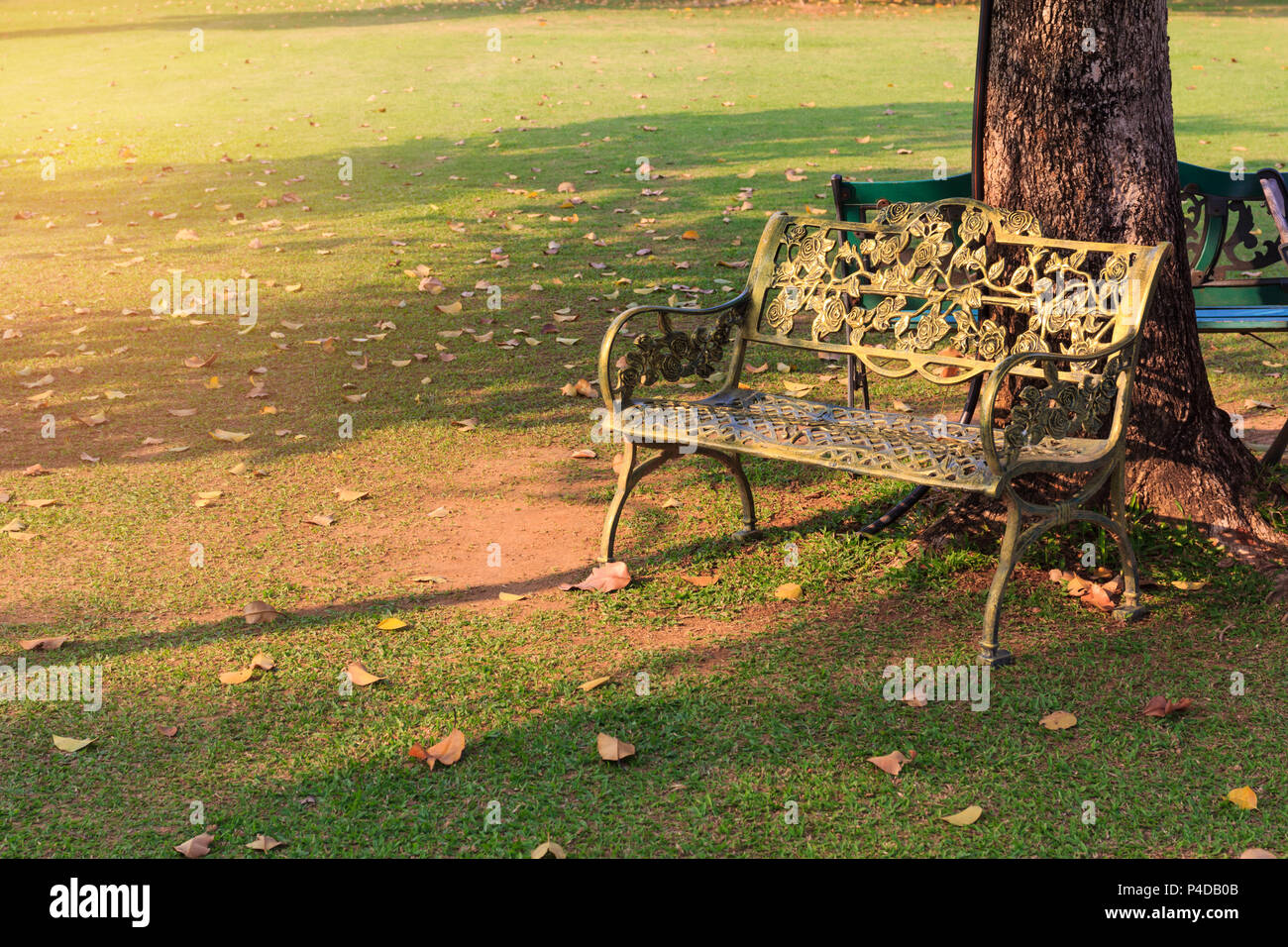 steel chair in guwahati swivel tommy hilfiger stainless bench stock photos and
