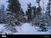 Beautiful Nature And Landscape Of Snowy Winter