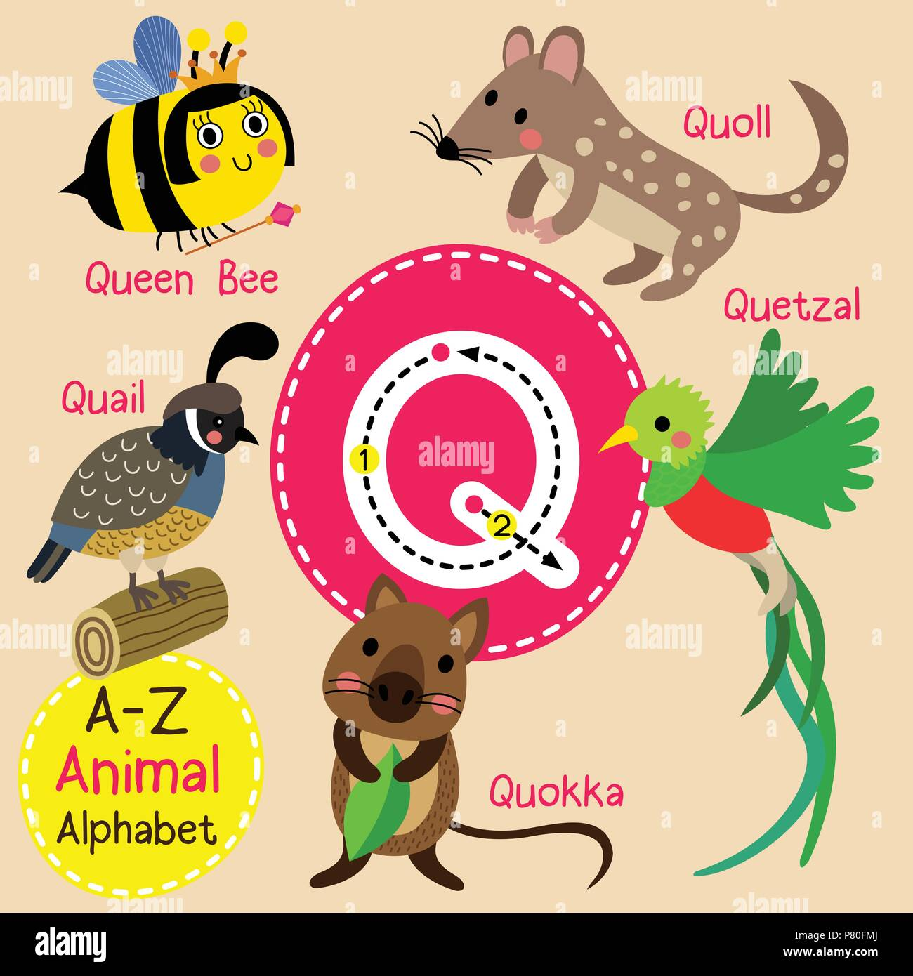 Alphabet Q High Resolution Stock Photography And Images Alamy