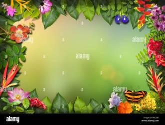 border nature flower leaf alamy template concept mockup
