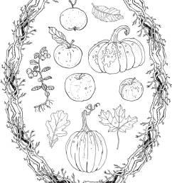 autumn harvest clipart set oval wreath branches frame pumpkins apples lingonberry oak maple falling leaves fall seasonal decoration coloring p [ 966 x 1390 Pixel ]