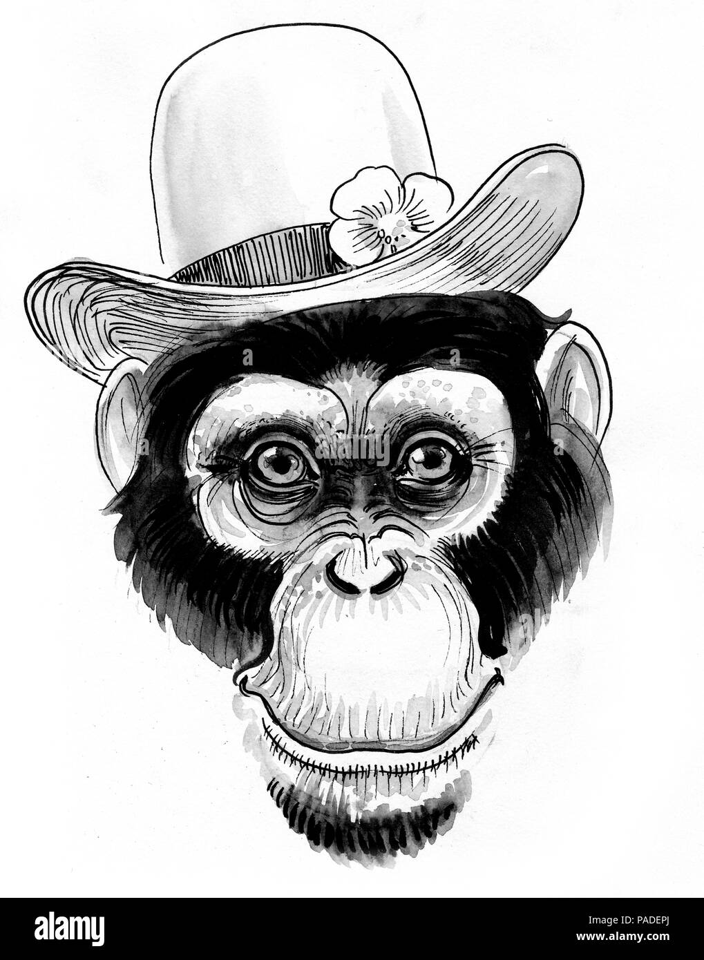 chimpanzee in hat ink