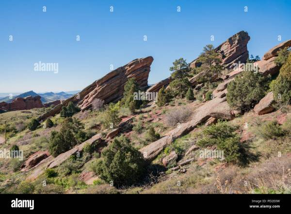 beautiful landscape of red rocks
