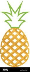 Outline fruit logo icon design template vector eps10 Stock Vector Image & Art Alamy