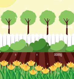 backyard with flowers garden fence and trees stock vector [ 1040 x 1390 Pixel ]