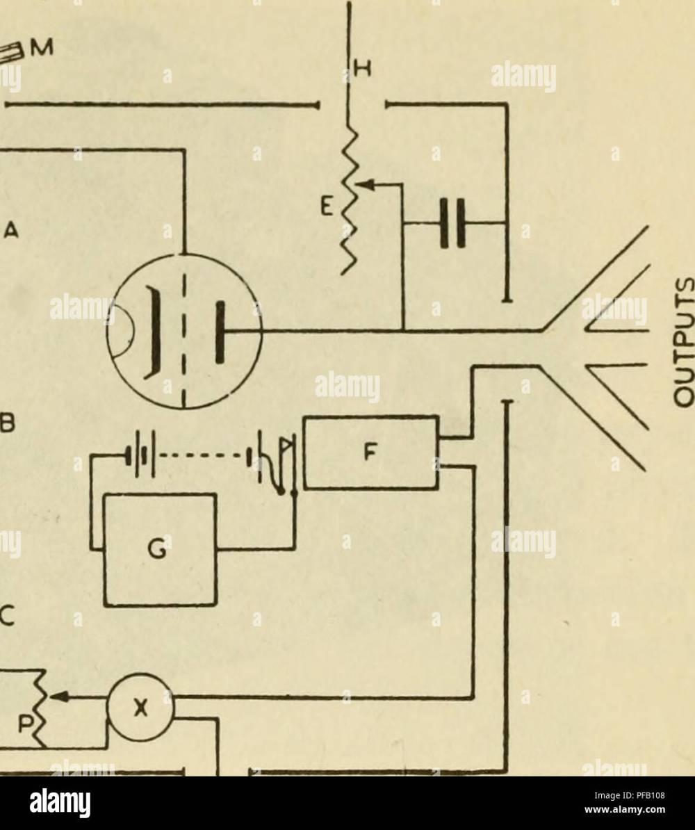 medium resolution of calculators central nervous system mathematical models behavior brain physiology lt 3 figure 8 2 3 wiring diagram of one unit