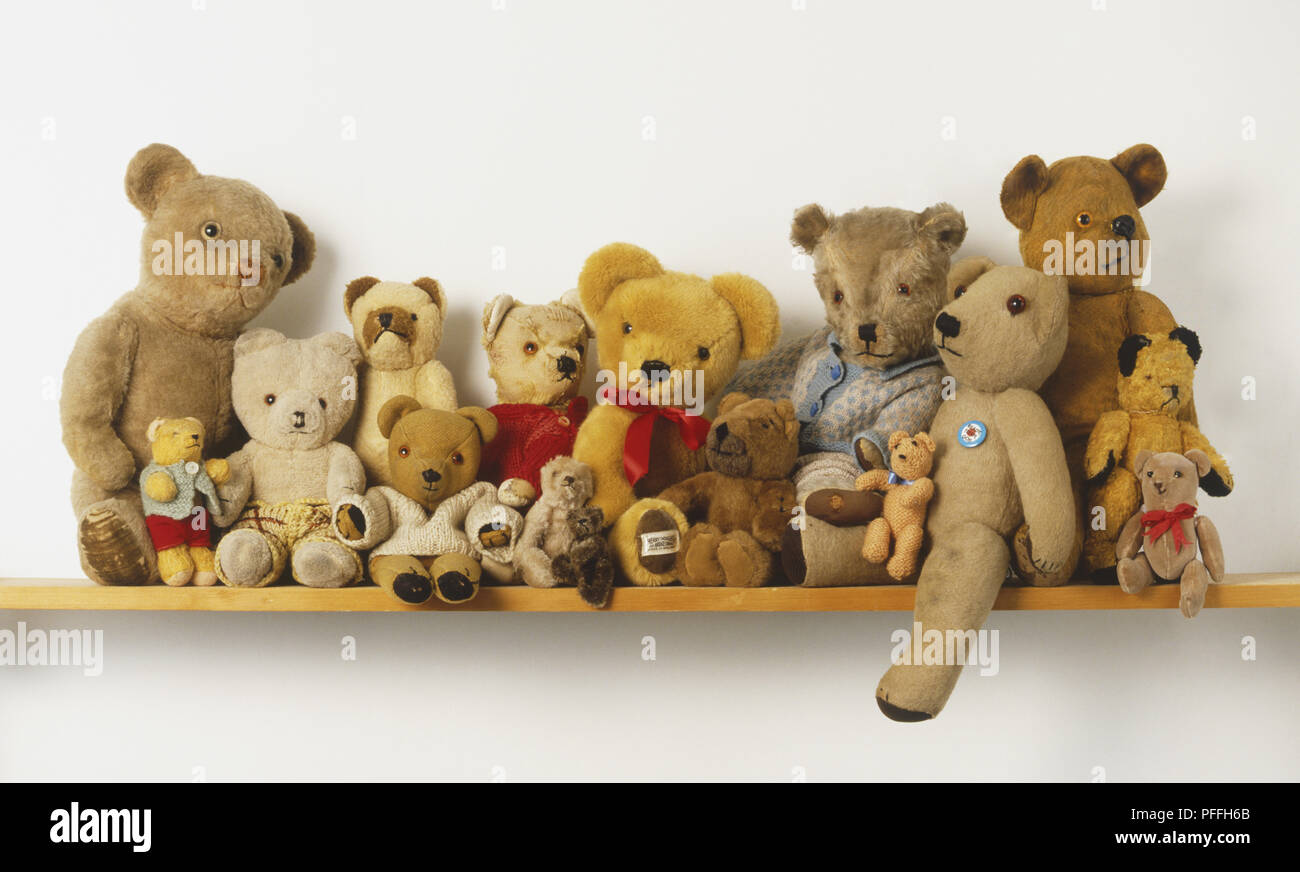 On The Shelf Collection Of Teddy Bears Arranged On Wall