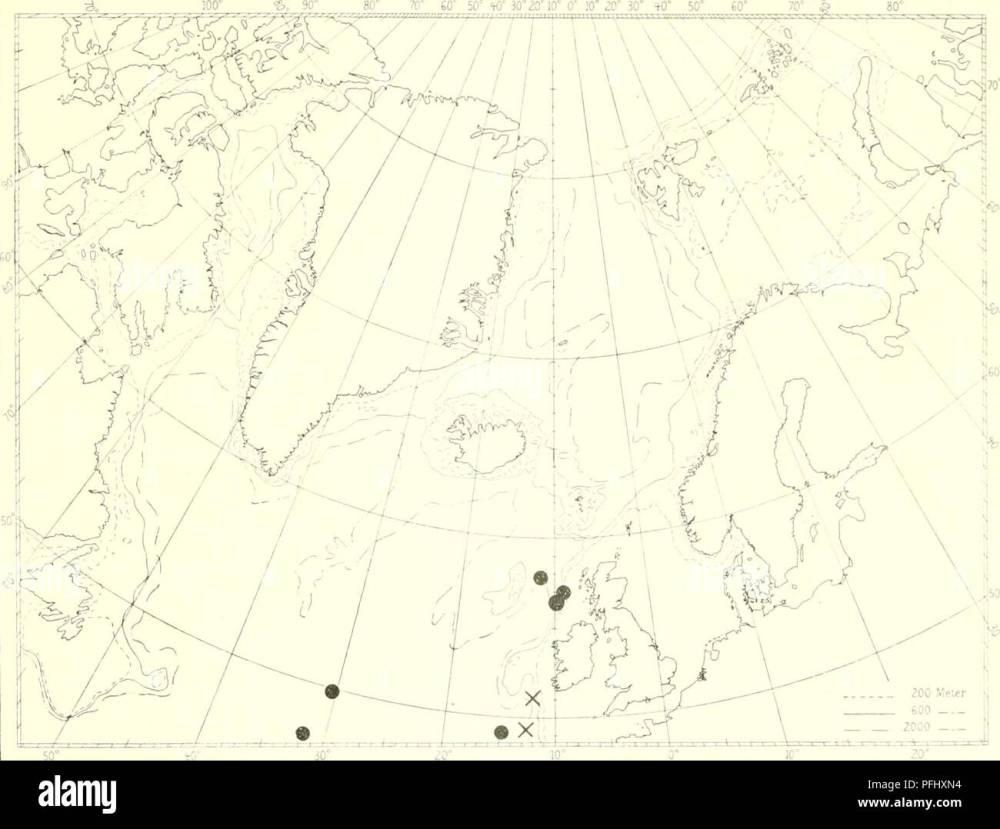 medium resolution of the danish ingolf expedition marine animals arctic regions scientific expeditions