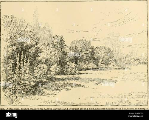 small resolution of cyclopedia of american horticulture comprising suggestions for cultivation of horticultural plants descriptions of