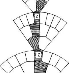 plant genetics heredity mendel s law plant breeding fig i diagram illustrating weisijann s theory of germinal continuity  [ 672 x 1390 Pixel ]